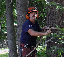 Greg Herz, Owner Herz Tree Service in Winterport Maine